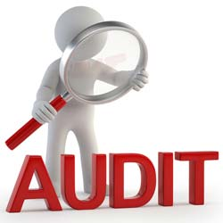 Audit Manager is required